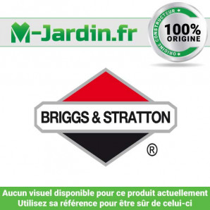 Filter-air cleaner ca Briggs & Stratton